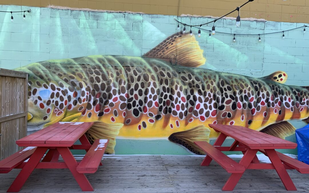 """Hidden Fish"" Mural"